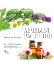 Лечебни растения: Наръчник за начинаещи