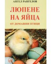 Люпене на яйца