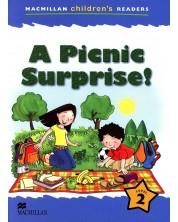 Macmillan Children's Readers: Picnic Surprise (ниво level 2)