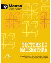 Mensa: Тестове по математика -1