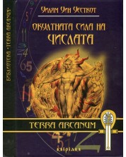 okultnata-sila-na-chislata