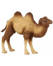 Фигурка Papo Wild Animal Kingdom – Двугърба камила -1