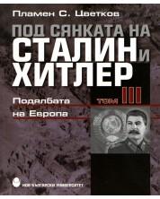 Под сянката на Сталин и Хитлер - том 3: Подялбата на Европа