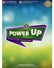 Power Up Level 1 Teacher's Book -1