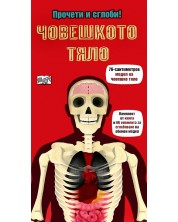 Човешкото тяло (Прочети и сглоби!)