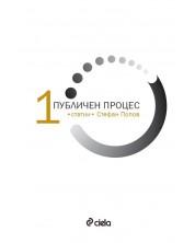 Публичен процес - том 1: Статии