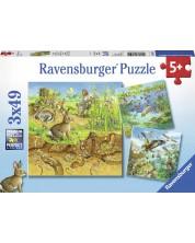Пъзел Ravensburger от 3 x 49 части - Животни в природата -1