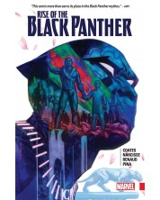 Rise of the Black Panther -1