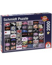 Пъзел Schmidt от 2000 части - Цветен поздрав