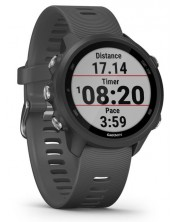 Смарт часовник Garmin Forerunner - 245, grey -1