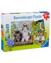 Пъзел Ravensburger от 3 x 49 части - Котета