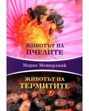 zhivotat-na-pchelite-zhivotat-na-termitite