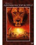 Африкански котки (DVD) - 1t