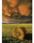 Пъзел Heye от 1000 части - Разразяваща се буря, Силата на Природата - 2t