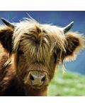 Пъзел Heye от 1000 части - Високопланинска крава - 2t