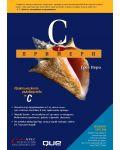 C в примери - 1t