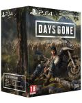 Days Gone Collector's Edition (PS4) - 1t
