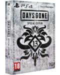 Days Gone Special Edition (PS4) - 1t