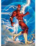 DC Comics – The New 52: The Poster Collection - 4t