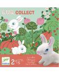 Детска игра Djeco - Little Collect - 2t