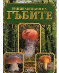 Енциклопедия на гъбите (твърди корици) - 1t