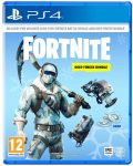 Fortnite - Deep Freeze Bundle (PS4) - 1t