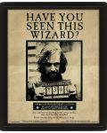 3D плакат с рамка Pyramid - Harry Potter: Potter / Sirius - 1t