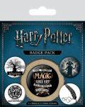 Комплект значки Pyramid -  Harry Potter (Symbols) - 1t