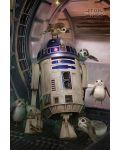 Макси плакат Pyramid - Star Wars The Last Jedi (R2-D2 & Porgs) - 1t