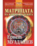 Матрицата на живота на Земята - 1t