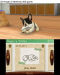 Nintendogs + Cats - French Bulldog (3DS) - 7t