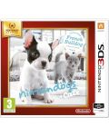 Nintendogs + Cats - French Bulldog (3DS) - 1t