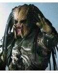 Пришълецът срещу Хищникът (DVD) - 3t