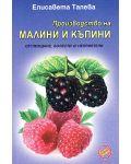 Производство на малини и къпини - 1t