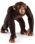 Фигурка Schleich Wild Life - Мъжко шимпанзе - 1t