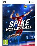 Spike Volleyball (PC) - 1t