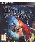 The Witch and the Hundred Knight (PS3) - 1t