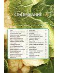 Златни рецепти: Вегетарианска кухня - 2t